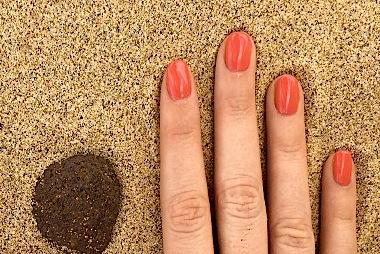 Shellac beim Härtetest im Sand von Fuerteventura.