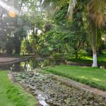 Amphitheater - 2 (Kairali The Ayurvedic Healing Village)