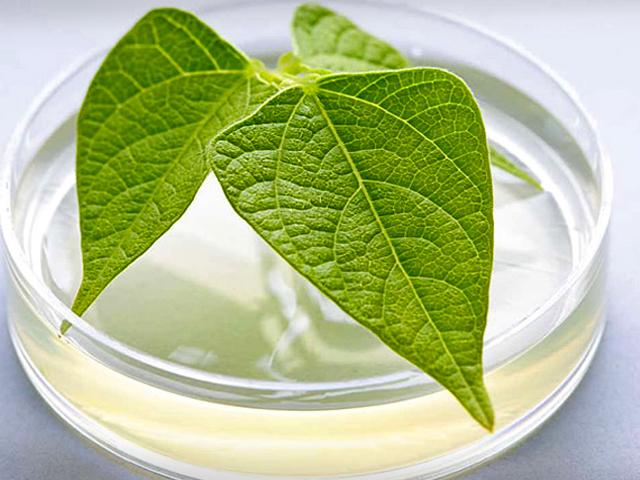 Nature skin Marvel remedy Test Erfahrung