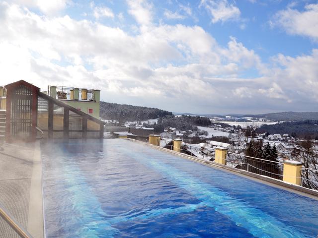 Hotel-Birkenhof-Dachpool