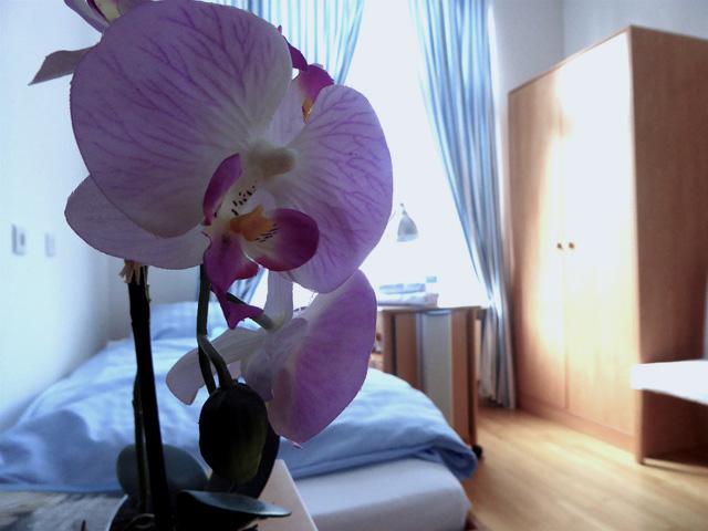 Beauty-Klinik-an-der-Alster-Dr-Klesper-P1010773